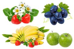 Bananer, jordgubbar, druvor och äpplen som isoleras på vit Royaltyfria Bilder
