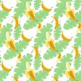 Bananer mönstrar genomskinlig bakgrund Fotografering för Bildbyråer