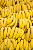 bananer många Royaltyfri Fotografi