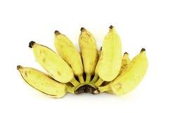 bananer samlar ihop över moget Royaltyfria Foton