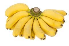 bananer samlar ihop isolerat Royaltyfri Fotografi