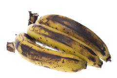 bananer som isoleras över moget Arkivbild