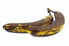 bananer två Royaltyfri Foto