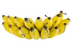 Bananes d'isolement sur le blanc Photographie stock libre de droits