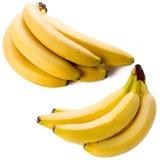 Bananes d'isolement sur le fond blanc Photos stock