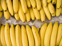 Bananes dans un cadre photo libre de droits