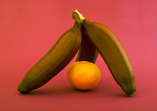 Bananes et orange de Brown Photographie stock