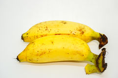 Bananes fraîches Photographie stock libre de droits
