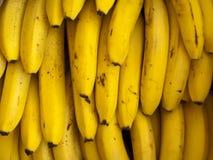 Bananes mûres délicieuses Images stock
