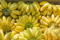 Bananes mûres dans la boîte Photo stock