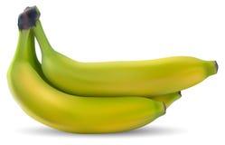 Bananes mûres Photo stock