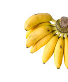 Bananes sur le fond blanc Photos libres de droits
