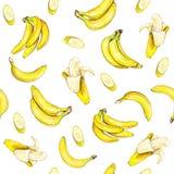 Bananes sur le fond blanc Configuration sans joint Illustration d'aquarelle Fruit tropical Travail manuel Photos libres de droits