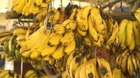 Bananes sur le marché de fruit clips vidéos
