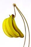 Bananes sur un crochet Photographie stock