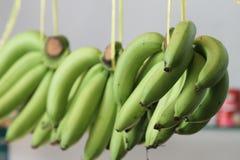 Bananes vertes Images stock