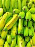 Bananes vertes organiques photo libre de droits