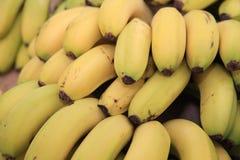 Banangrupp på bondemarknad Arkivfoto