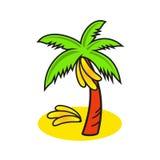 Bananier de vecteur d'isolement sur le fond blanc Illustration Stock