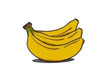 Bananillustratör royaltyfri illustrationer