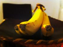 Bananna. Banana food time royalty free stock photo