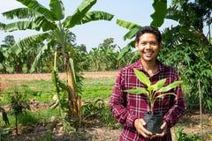 Banano asiatico della tenuta dell'agricoltore dell'uomo Fotografia Stock