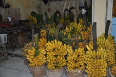 Bananowa owoc Fotografia Royalty Free