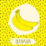 Bananowa ręka rysująca kreślił owoc z liściem na tle z kropka wzorem Doodle wektorowego banana dla loga, etykietka, gatunek tożsa ilustracja wektor