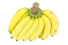 Bananowa wiązka odizolowywająca na bielu Zdjęcie Stock