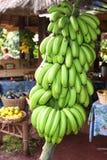 Bananowa Wiązka Obraz Stock