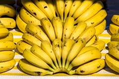 bananowe tło owoc odizolowywali biel Obrazy Stock