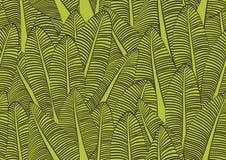 Bananowego liścia bezszwowa deseniowa wektorowa ilustracja dla tkaniny, płótno, pakunek, ściana, dekoracja, meble, drukowi środki royalty ilustracja
