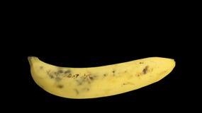 Bananowej owocowej świeżej dojrzałej żółtej skóry zdrowy pojęcie zdjęcie stock
