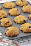 Bananowi czarnych jagod muffins Fotografia Stock