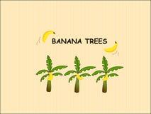 Bananowi drzewa Obrazy Royalty Free