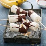 Bananowi i czekoladowi popsicles Fotografia Royalty Free