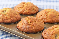 Bananowi muffins Obrazy Royalty Free