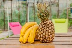 Bananowy ananasa set Zdjęcia Stock