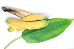 Bananowy liść i łupa odizolowywający na białym tle Zdjęcia Royalty Free