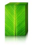 Bananowy liścia pudełko Zdjęcie Stock