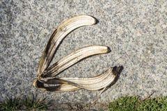 Bananpeel på trottoar Arkivbilder