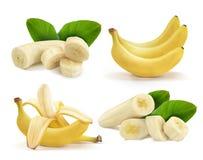Bananupps?ttning Knäpp helt och skivat med gröna sidor royaltyfri illustrationer