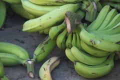 Banany obrazy royalty free