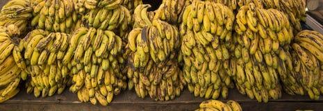 Banany dla sprzedaży przy plenerowym rynkiem Obrazy Stock