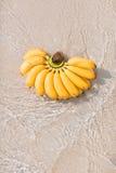 Banany na plaży Fotografia Royalty Free
