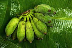 Banany umieszczający na bananowych liściach Zdjęcie Royalty Free