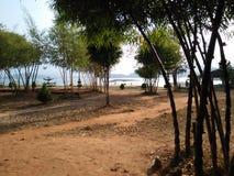 Banasugar水坝wayanad 免版税图库摄影
