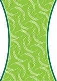 banatka Obrazy Stock