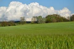 Banatka krajobraz Fotografia Stock