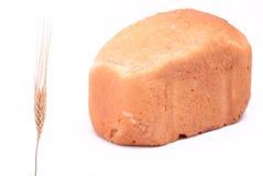 Banatka przed chlebem Zdjęcie Stock